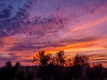 在乡下风景的惊人的日落 免版税库存照片