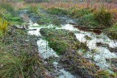 在乡下风景的越野轨道与一个泥泞的路和水坑 极端道路农村土 夏天风景与 库存照片
