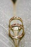 在书安置的两只金戒指 免版税库存图片