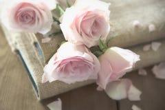 在书的桃红色玫瑰 免版税图库摄影