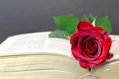 在书的红色玫瑰 免版税库存照片
