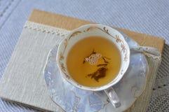 在书的茶杯 库存图片