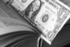 在书里面的美元 财务的概念 库存图片