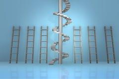 在事业进步概念- 3d的不同的梯子翻译 免版税库存照片