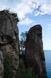 在二个岩石之间的结构树 免版税库存图片