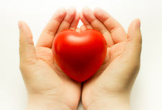 心脏在手中 免版税库存照片