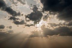 在云彩之后群飞行发光天空星期日燕子swifts 免版税库存照片