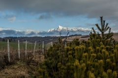 在云彩之间的一座山 库存图片