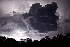 在云彩内的珀斯闪电 库存照片