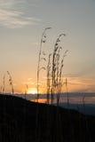 在云彩后的太阳设置 免版税库存图片