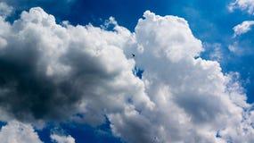 在云彩的一次鸟飞行 免版税库存照片