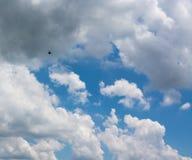 在云彩的一次鸟飞行 图库摄影