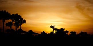 在云彩的夏天日落 在山的金黄日落晚上和海靠岸 在山采撷和棕榈的橙色日落在海滨机智 库存图片