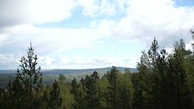 在云彩的蓝天在森林 股票视频