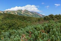 在云彩的Vilyuchinsky stratovolcano 从brookvalley Spokoyny的看法在外面东北倾斜的脚  库存图片