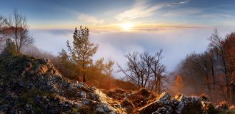 在云彩landcape的太阳与树 库存图片
