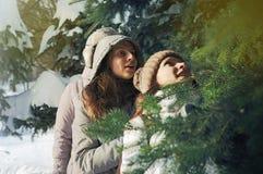 在云杉的分支中的两个女孩在冬天 库存图片