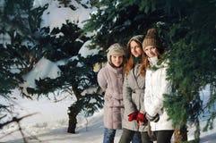 在云杉的早午餐中的三个女孩在冬天 图库摄影
