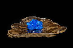 在云母的Chalcithite水晶 免版税图库摄影