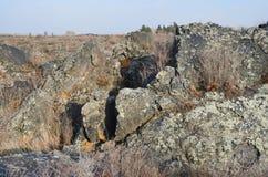 在五大连池全球性geopark的熔岩荒野在多云天气的华北 免版税库存图片