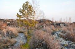 在五大连池全球性geopark的熔岩荒野在多云天气的华北 库存照片