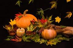 在五颜六色的叶子中的明亮的橙色南瓜 库存图片