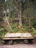 在五颜六色的夏天木头的长凳 库存图片