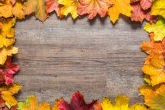 在五颜六色的秋叶外面的框架在木背景 免版税库存图片