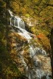 在五颜六色的秋叶的开头显露Cloudland秋天,新的Ha 免版税库存图片