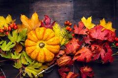 在五颜六色的秋叶的美丽的南瓜,黑暗的木背景 库存照片