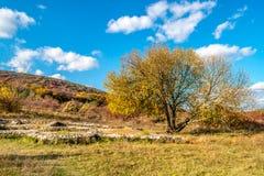 在五颜六色的秋天森林,小山, 11月,斯洛伐克下的罗马废墟别墅Rustica,在布拉索夫附近 库存图片