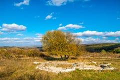 在五颜六色的秋天森林,小山, 11月,斯洛伐克下的罗马废墟别墅Rustica,在布拉索夫附近 免版税库存照片