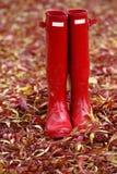 在五颜六色的秋天秋天叶子的红色Wellies 免版税库存照片