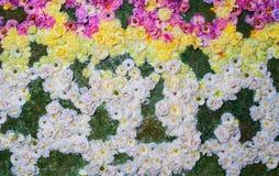 在五颜六色的花花圃的纹理在公园 库存图片