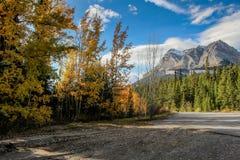 在亚伯大加拿大山的秋季  库存照片