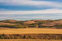 在亚伯大山麓小丘的秋天。 库存图片