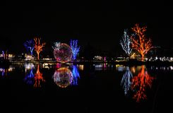 在亚利桑那节日Zoolights的五颜六色的圣诞灯  库存图片