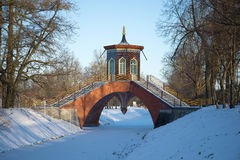 在亚历山大公园过桥梁11月雪天 Tsarskoye Selo,圣彼得堡 俄国 库存图片