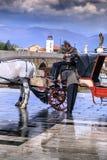 在亚历山大大帝附近, Skopj的纪念碑的马支架 库存照片