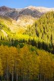 在亚斯本,碲化物,科罗拉多的美好的山风景 免版税库存照片