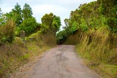 在亚速尔群岛的美好的自然视图 图库摄影