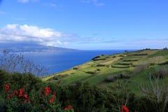 在亚速尔群岛葡萄牙和Pico的美丽的Isla Faial 免版税图库摄影