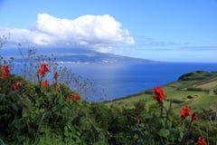 在亚速尔群岛葡萄牙和Pico的美丽的Isla Faial 库存照片