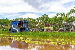 在亚马逊的大量手段 图库摄影