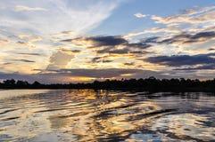 在亚马逊雨林的日落, Manaos,巴西 免版税图库摄影