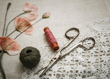 在亚麻布的缝合的工具与鞋带和干燥鸦片看起来刺绣 免版税库存照片