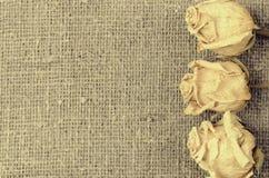 在亚麻帆布背景的三朵干燥白玫瑰 库存照片
