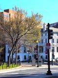 在交叉点的平静的城市角落,在树的新的叶子 库存图片
