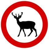 在交通标志的一头鹿 库存照片