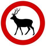 在交通标志的一头鹿 免版税图库摄影